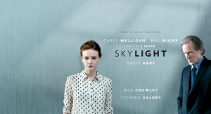 ntlive_skylight_large2