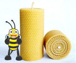 project-bee-of-approval